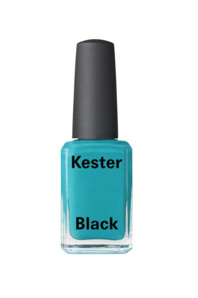 KESTER-BLACK-terrarium