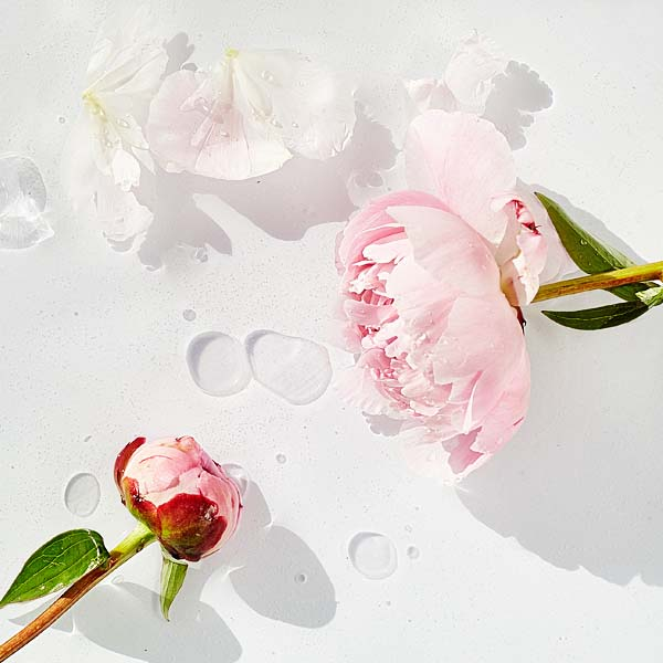 MADARA-FLOWER