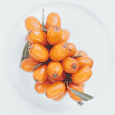 olivello-spinoso-mossa-ingredienti